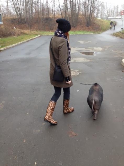 dare rain boots