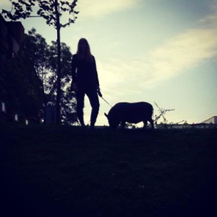 photo 5(1)