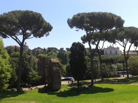rome (177)
