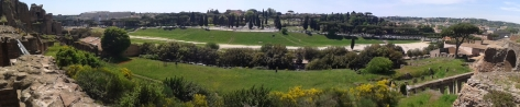 rome (181)