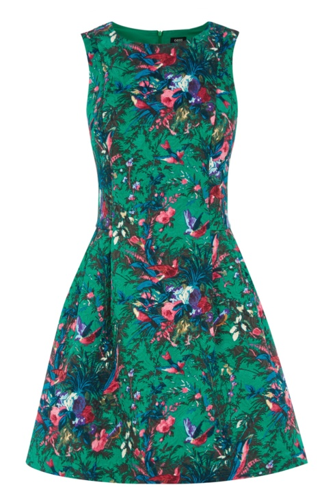 Oasis Bloom Bird Print Dress